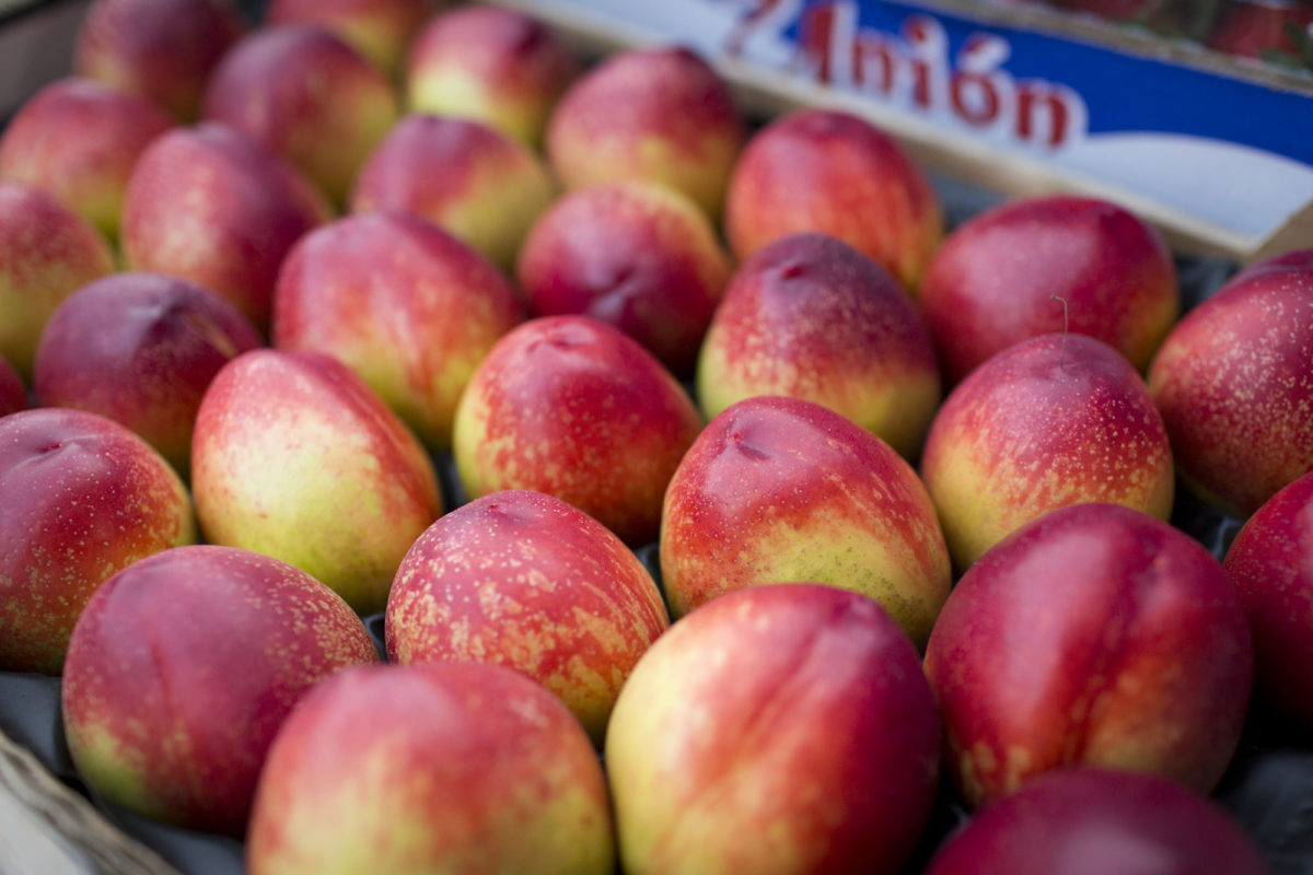 Fruit And Vegetable Market Report May 2016 Nectarines