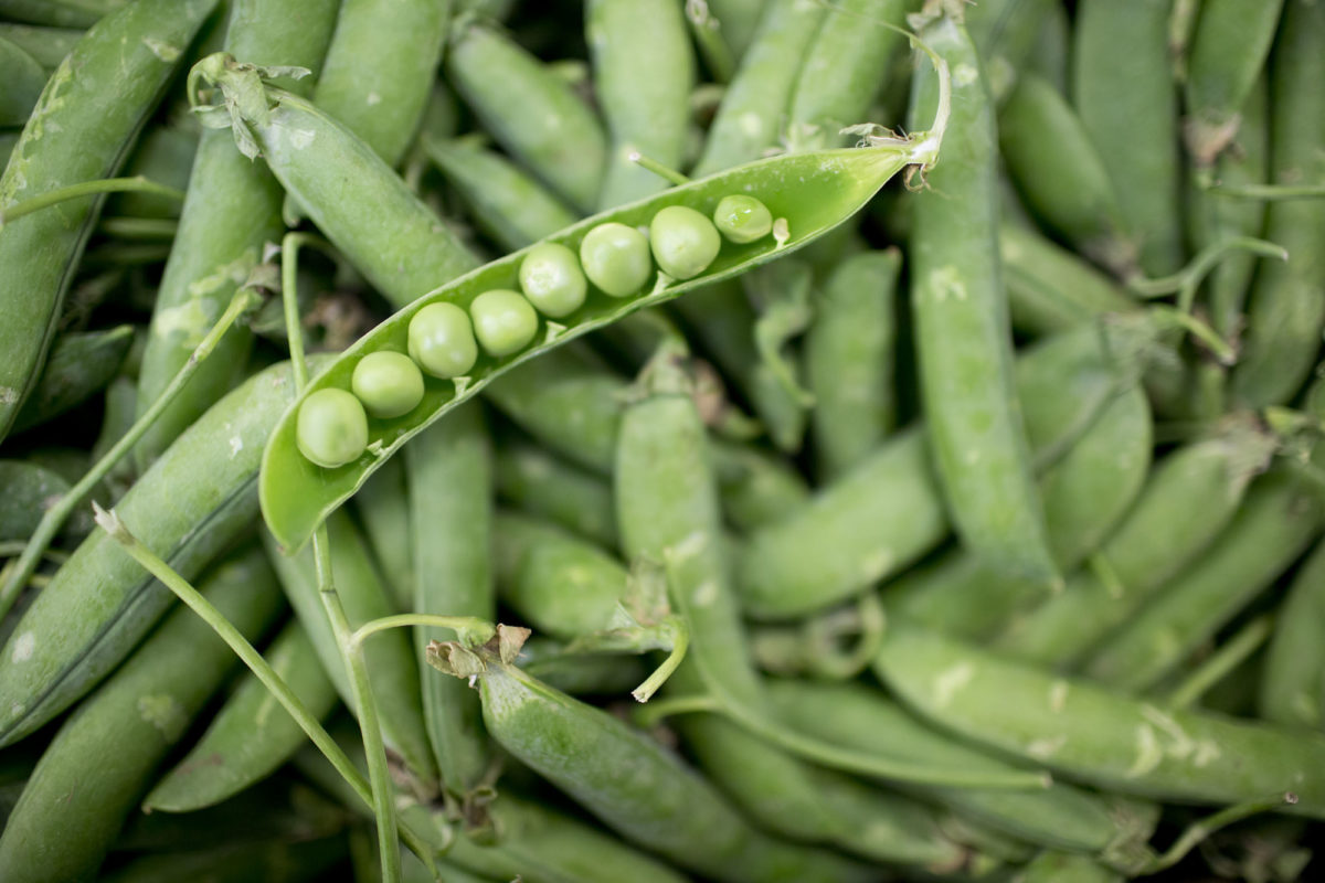 Fruit And Vegetable Market Report May 2016 Peas
