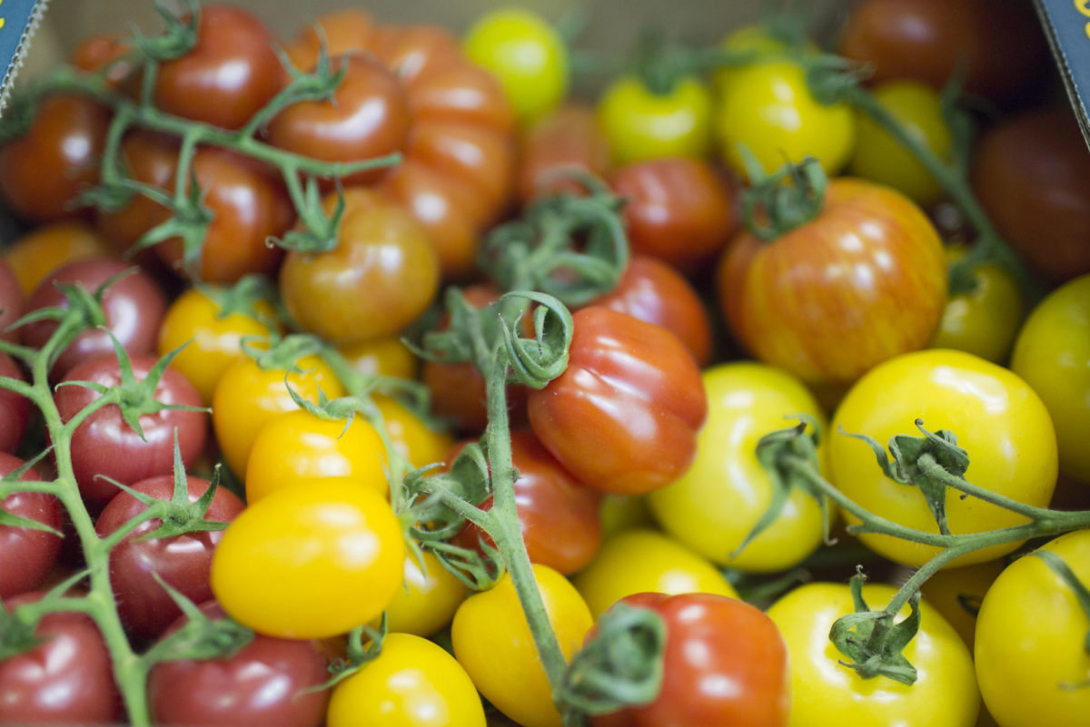Fruit And Vegetable Market Report May 2016 Tomatoes