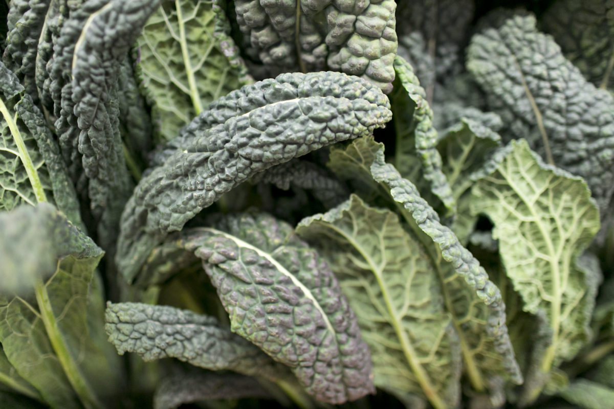 Fruit And Vegetable Market Report November 2015 Cavolo Nero