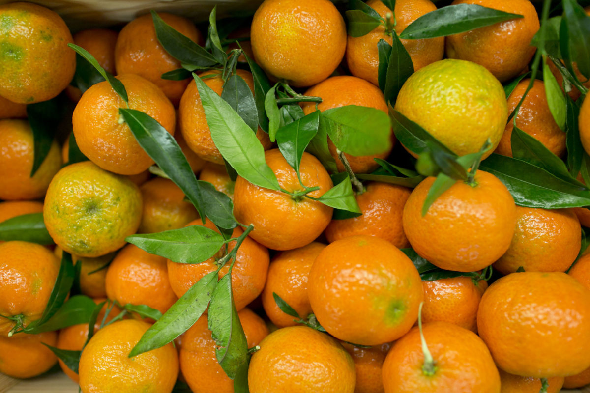 Fruit And Vegetable Market Report November 2015 Clementines