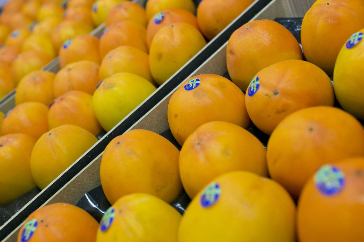 Fruit And Vegetable Market Report November 2015 Kaki Fruit