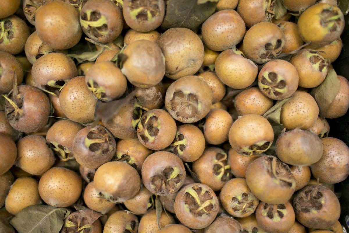 Fruit And Vegetable Market Report November 2015 Medlars