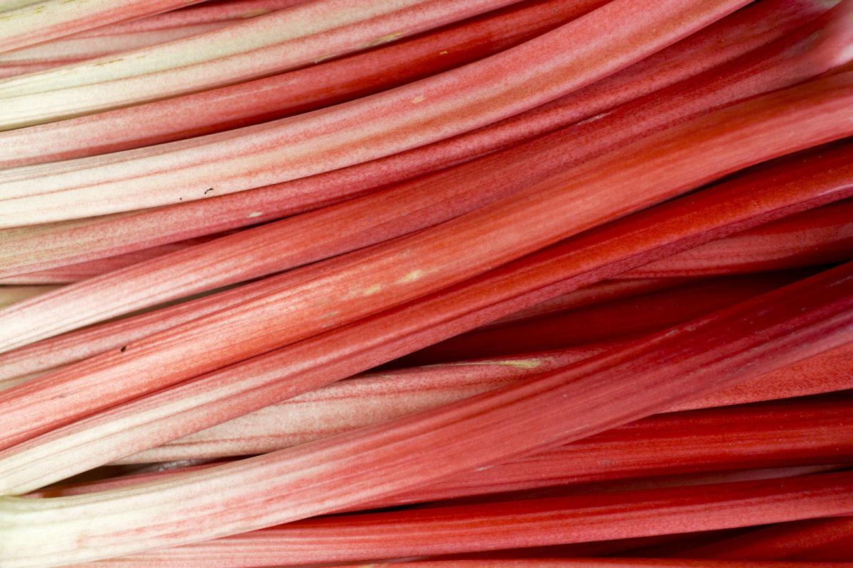 Fruit And Vegetable Market Report November 2015 Rhubarb