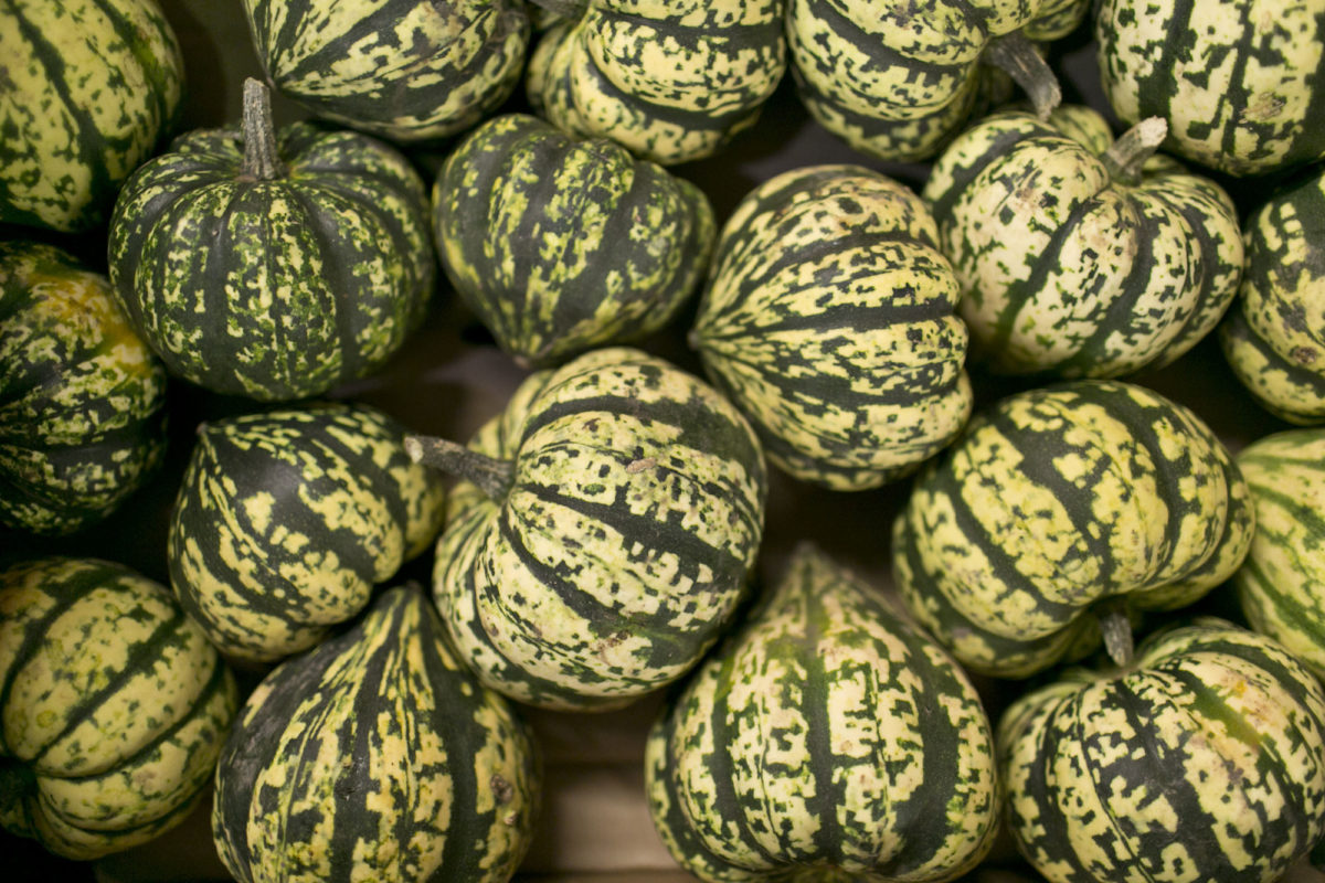 Fruit And Vegetable Market Report November 2015 Squashes