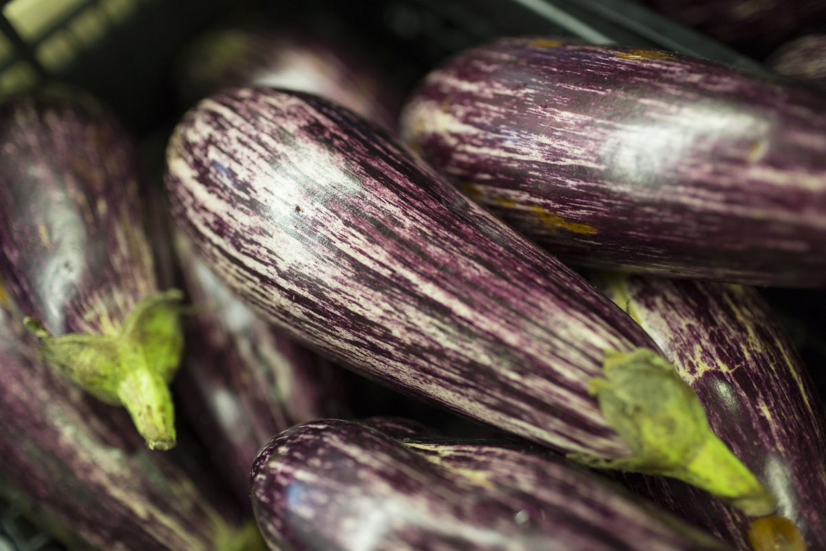 Fruit And Vegetable Market Report November 2016 Aubergine