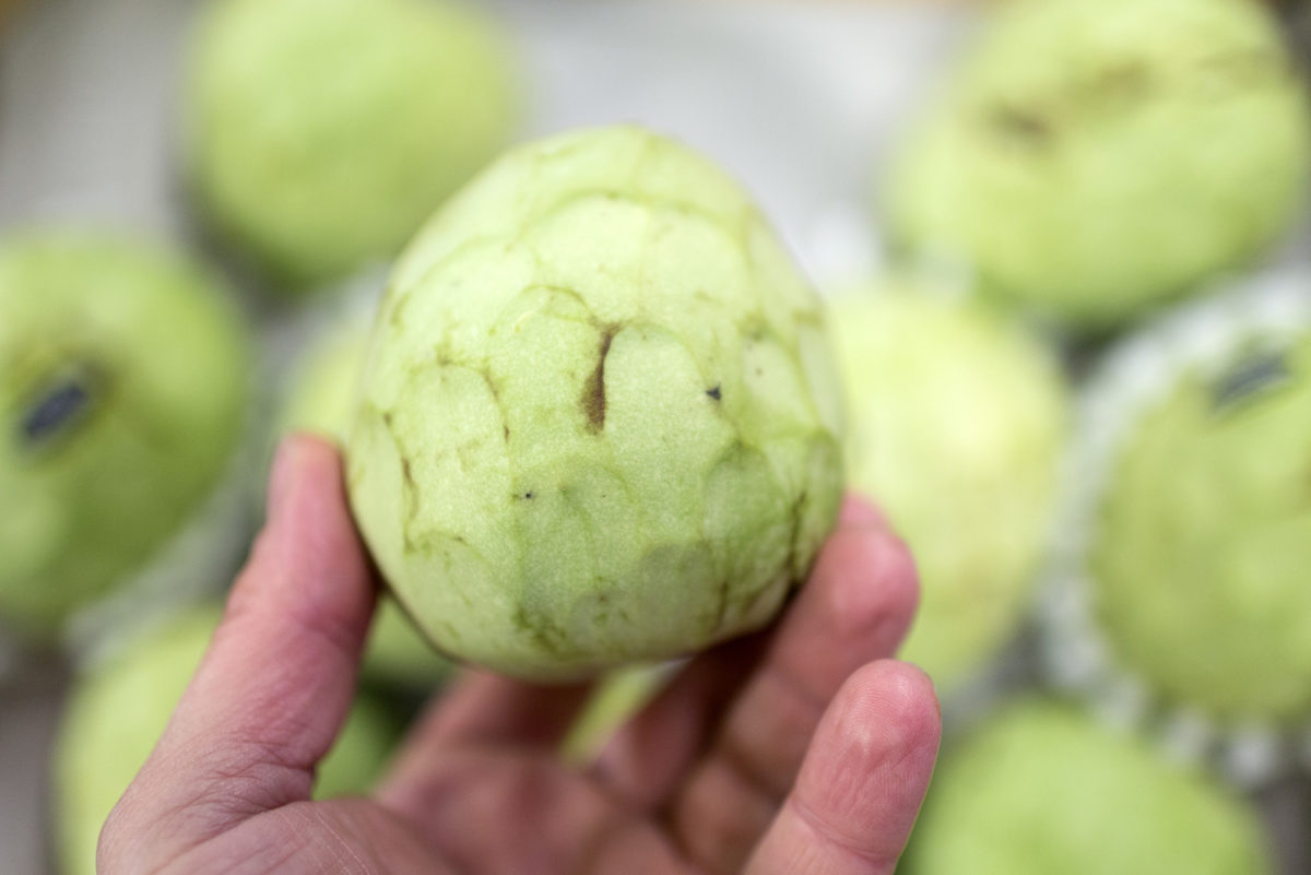 Fruit And Vegetable Market Report November 2016 Cherimoya
