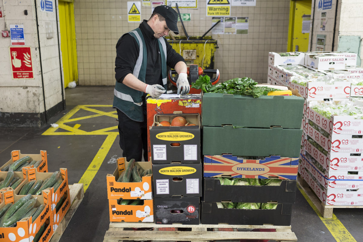 Fruit And Vegetable Market Report November 2016 Pallet Of Orders