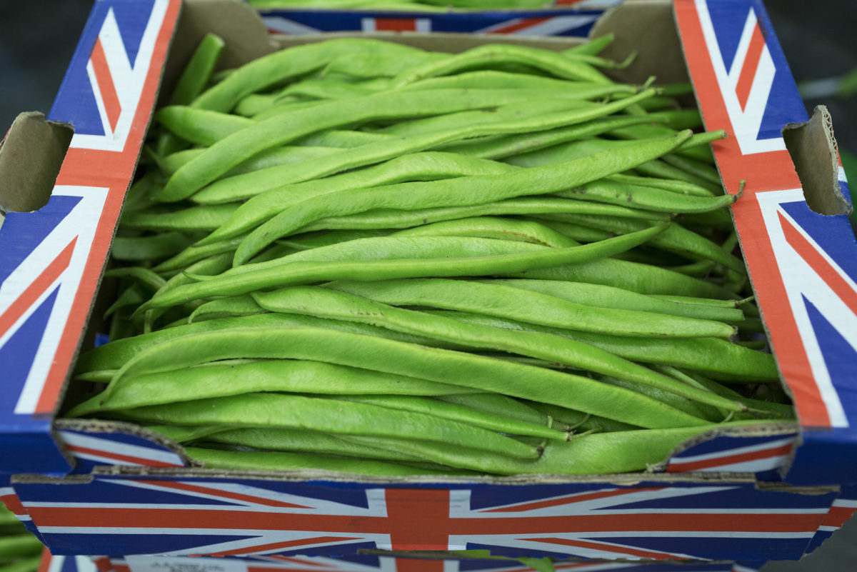 Fruit And Vegetable Market Report November 2016 Runner Beans