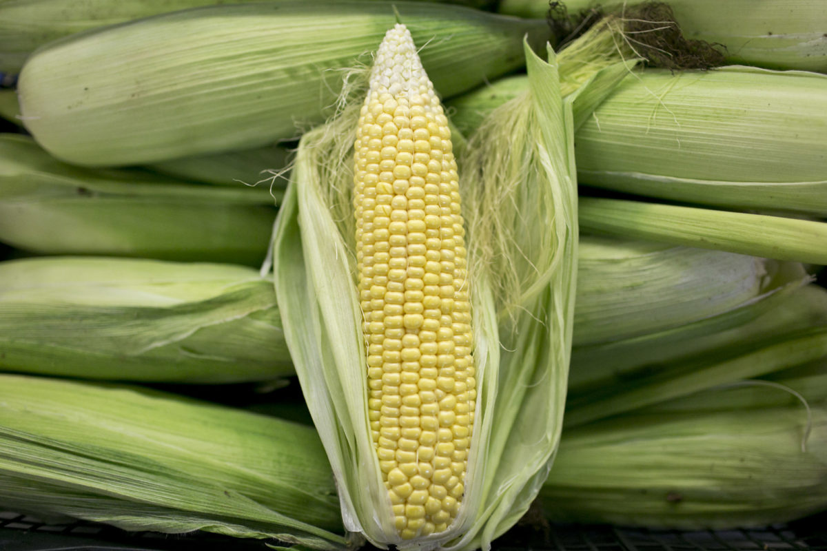 Fruit And Vegetable Market Report October 2015 Sweetcorn
