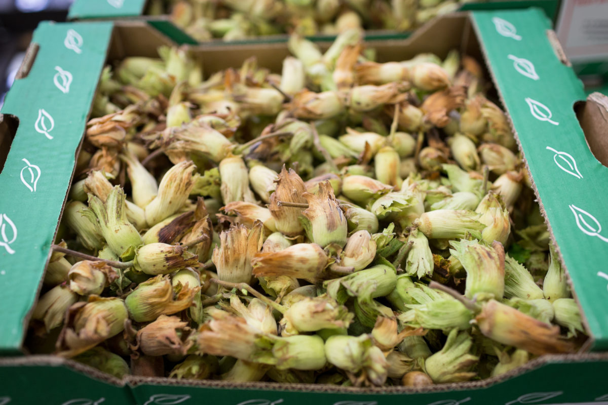 Fruit And Vegetable Market Report September 2017 Cobnuts