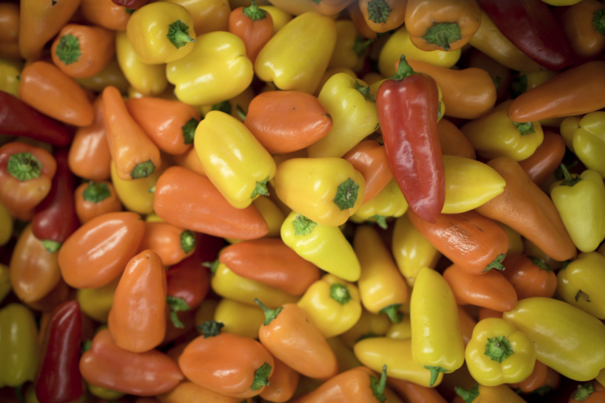 Fruit And Vegetables Market Report December 2015 Sweet Peppers