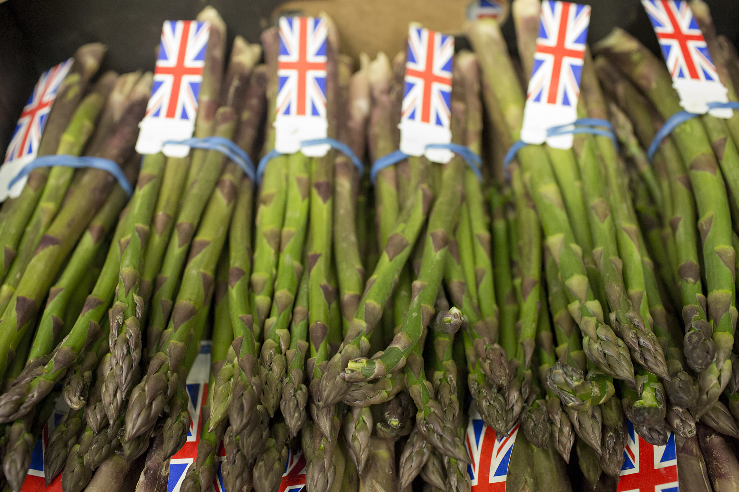 Fruit And Vegetable Market Report April 2014 Asparagus