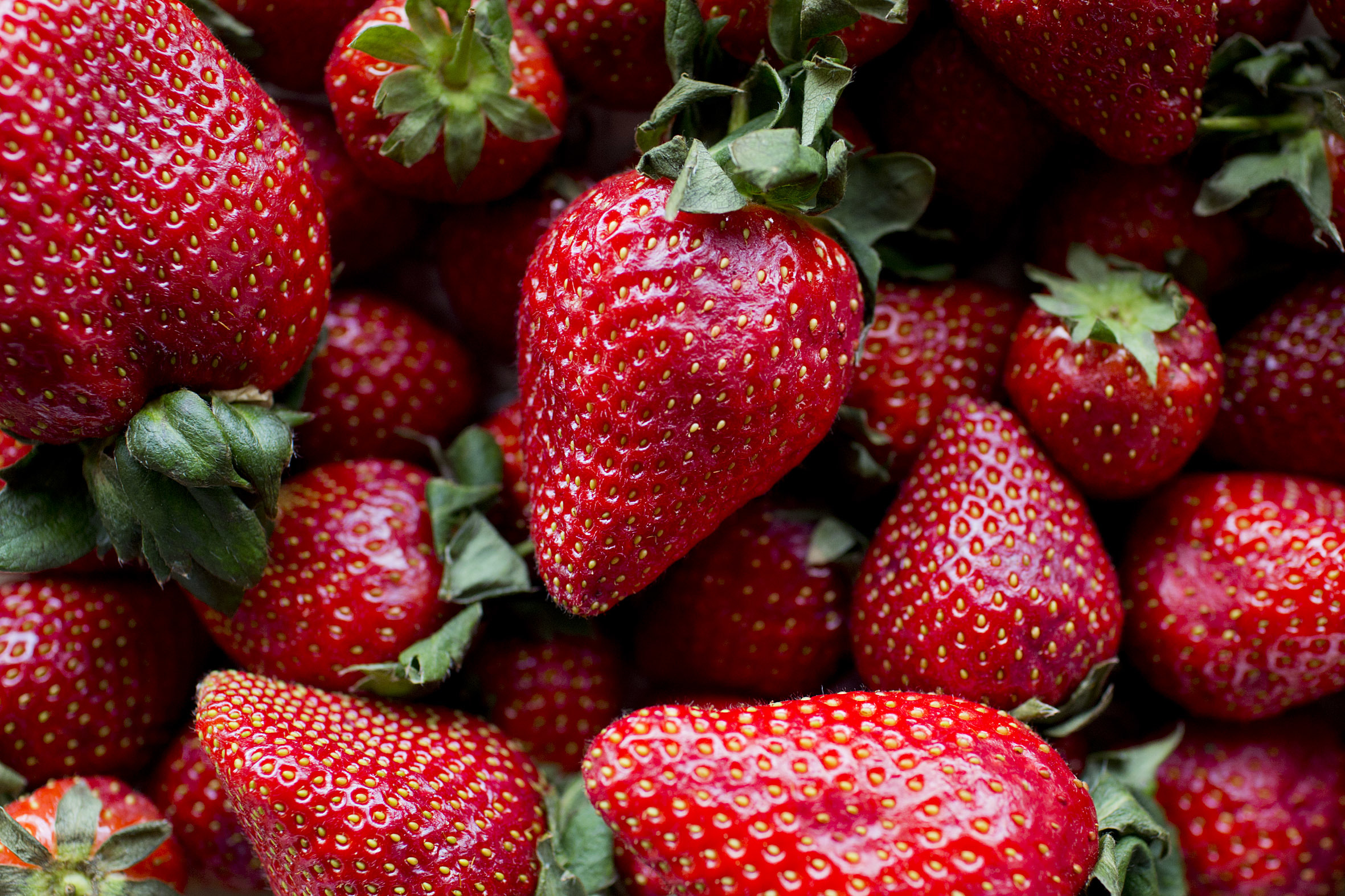 Fruit And Vegetable Market Report April 2014 Strawberry