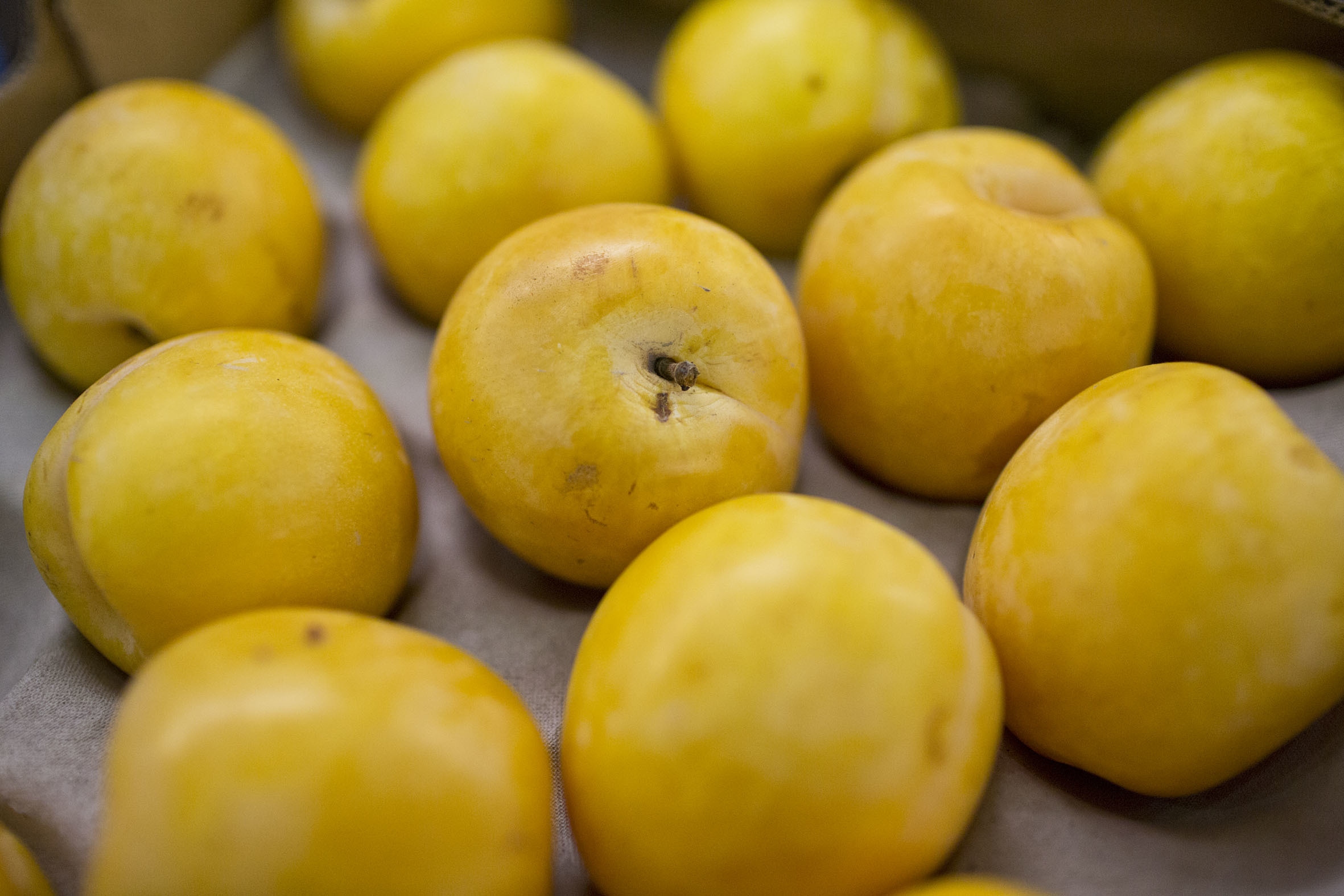 Fruit And Vegetable Market Report April 2014 Yellow Plum