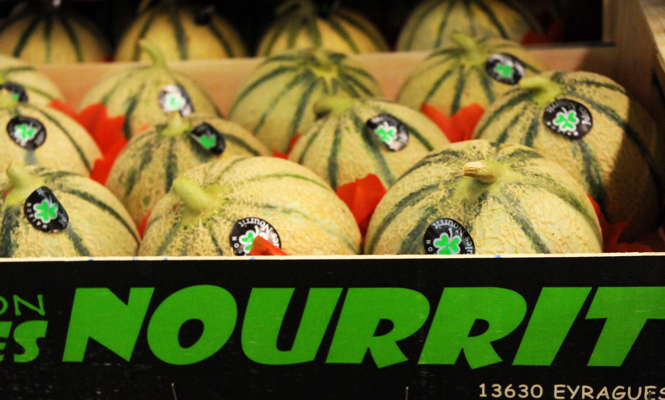 Melons.JPG?mtime=20170922143124#asset:11515