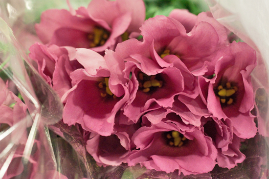 New-Covent-Garden-Flower-Market-November-Flowerona-2.jpg?mtime=20170928144545#asset:11916