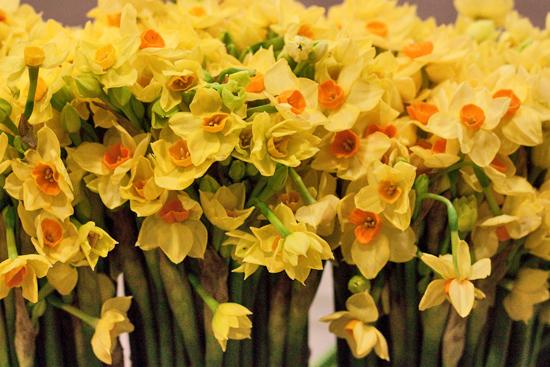 New-Covent-Garden-Flower-Market-November-Flowerona-4.jpg?mtime=20170928144547#asset:11918