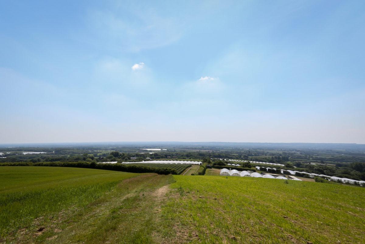 Fruit And Veg Grower Profile June 2017 Hugh Lowe Landscape