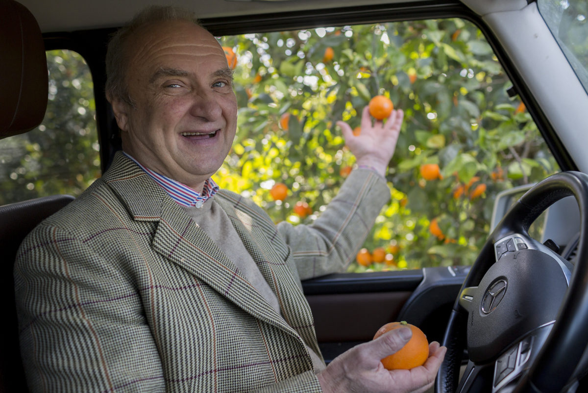 Fruit And Veg Product Profile January 2017 Blood Oranges Baron Von Freyberg Driving