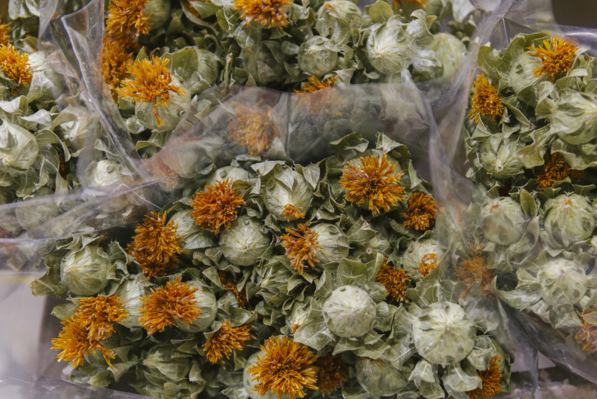 New Covent Garden Flower Market April 2019 A Florists Guide To Dried Flowers And Grasses Rona Wheeldon Flowerona Dried Bidens At Porters Foliage