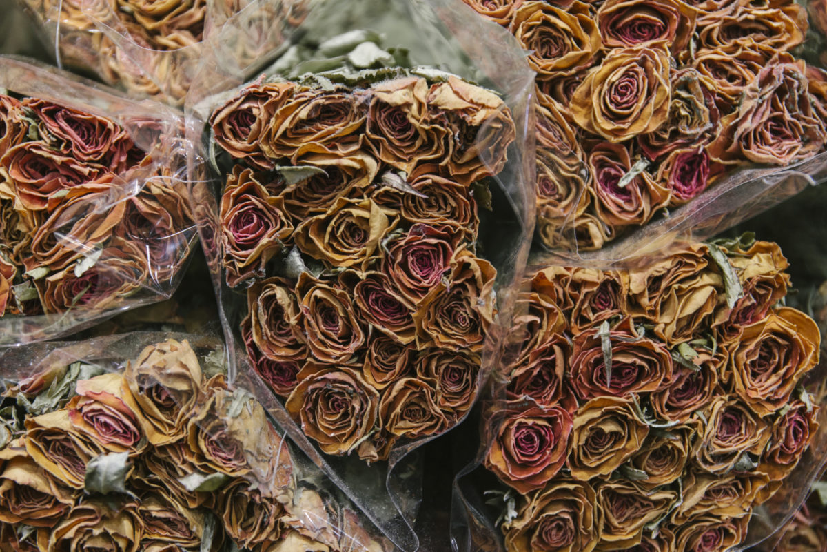 New Covent Garden Flower Market April 2019 A Florists Guide To Dried Flowers And Grasses Rona Wheeldon Flowerona Dried Peach Spray Roses At Porters Foliage