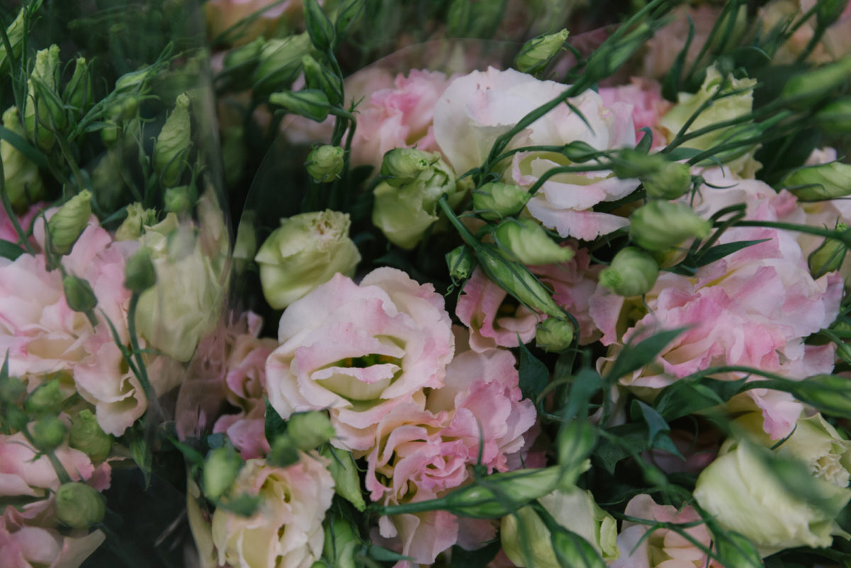 New Covent Garden Flower Market August 2018 In Season Report Rona Wheeldon Flowerona British Lisianthus At Dg Wholesale Flowers