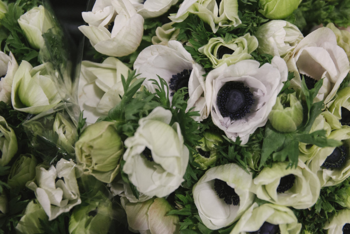New Covent Garden Flower Market February 2019 A Florists Guide To Anemones Rona Wheeldon Flowerona Mistral Plus White Anemones At Dg Wholesale Flowers