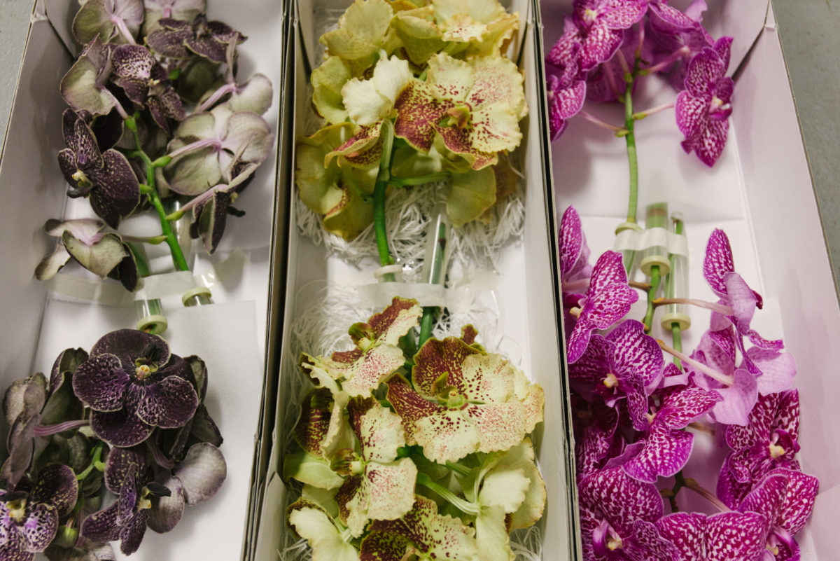 In Season At The Flower Market This January New Covent Garden Market