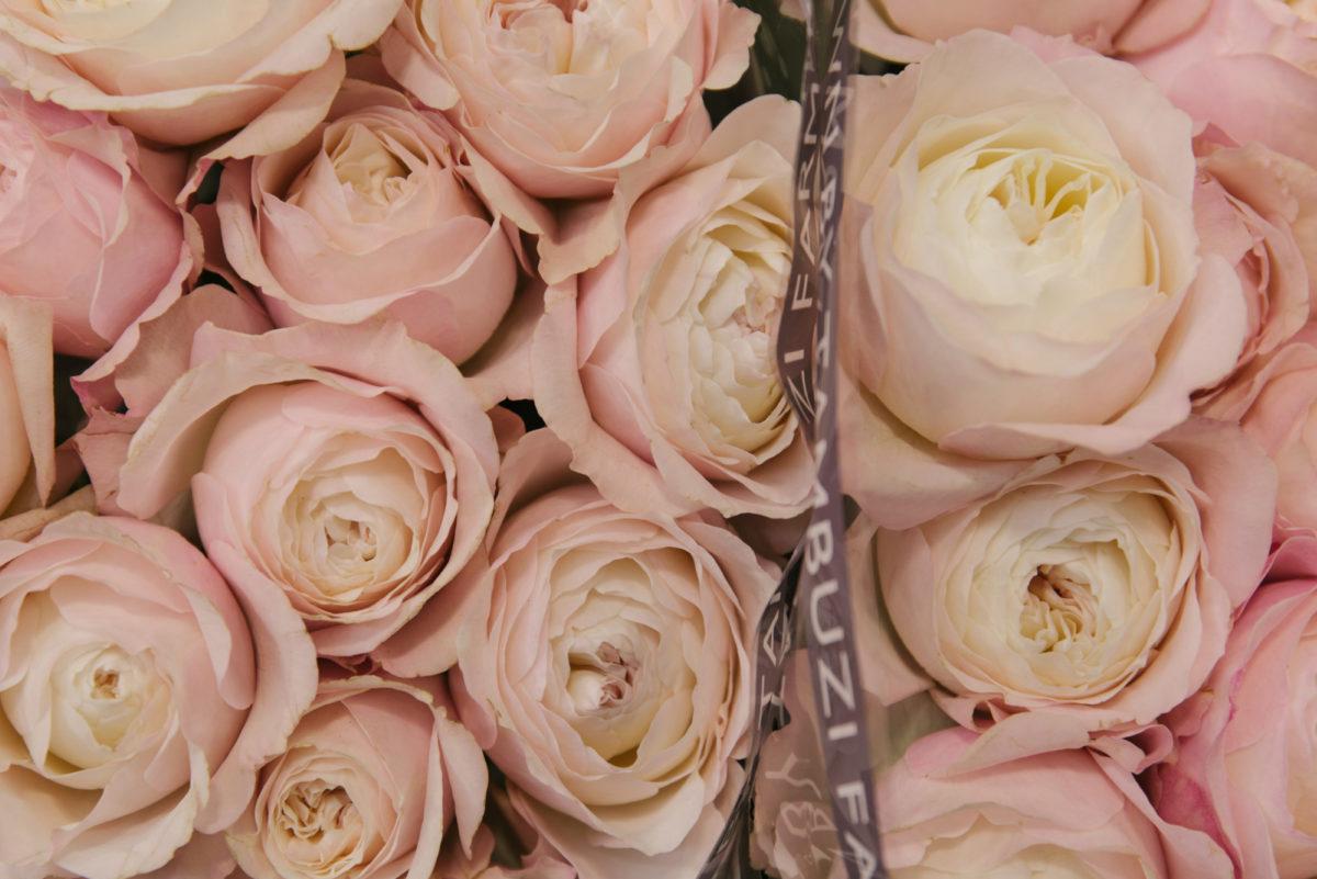 New Covent Garden Flower Market July 2018 In Season Report Rona Wheeldon Flowerona Keira David Austin Roses At Zest Flowers