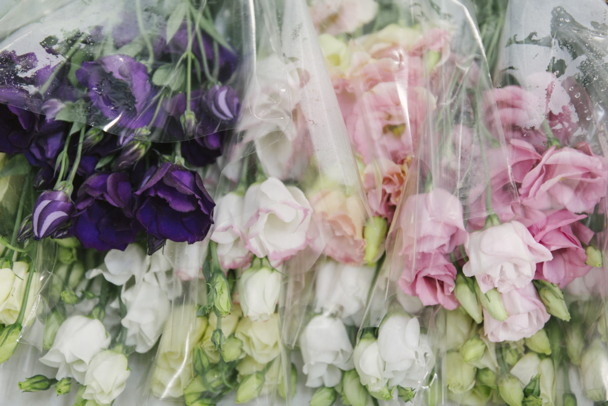 New Covent Garden Flower Market June 2019 A Florists Guide To British Flowers Rona Wheeldon Flowerona British Lisianthus At Pratley