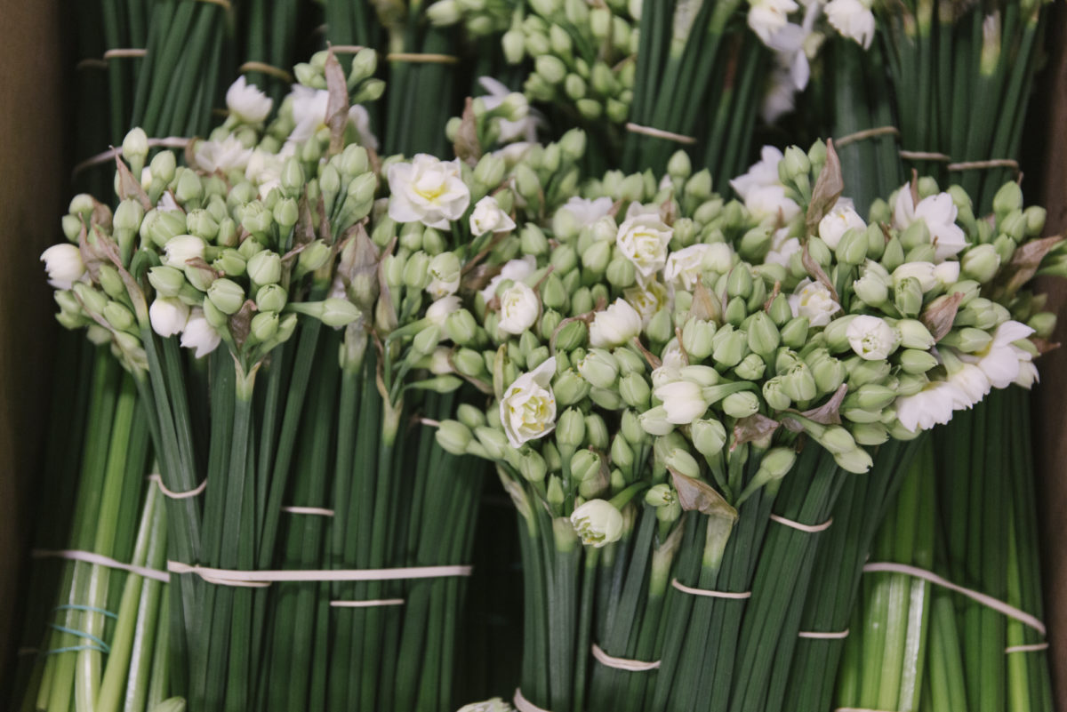 New Covent Garden Flower Market March 2019 In Season Report Rona Wheeldon Flowerona British Narcissus Erlicheer At Pratley