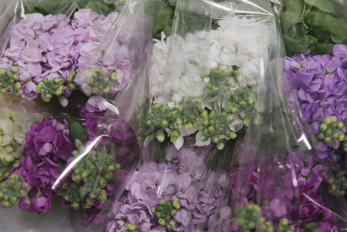 New Covent Garden Flower Market May 2019 In Season Report Rona Wheeldon Flowerona British Stocks At Pratley