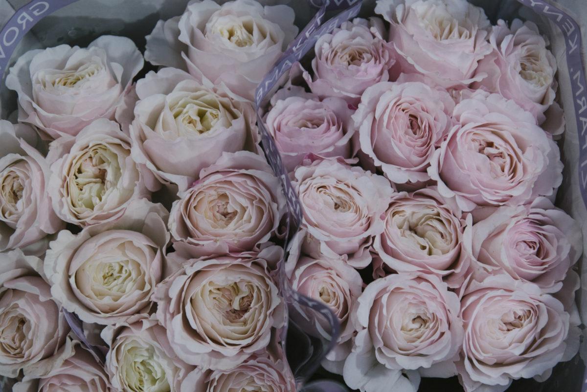 New Covent Garden Flower Market May 2019 In Season Report Rona Wheeldon Flowerona Keira Roses