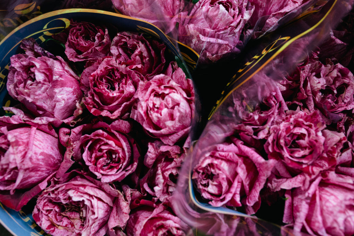 New Covent Garden Flower Market October 2017 Flower Market Report Crazy Eye Rose At Dg Wholesale Flowers