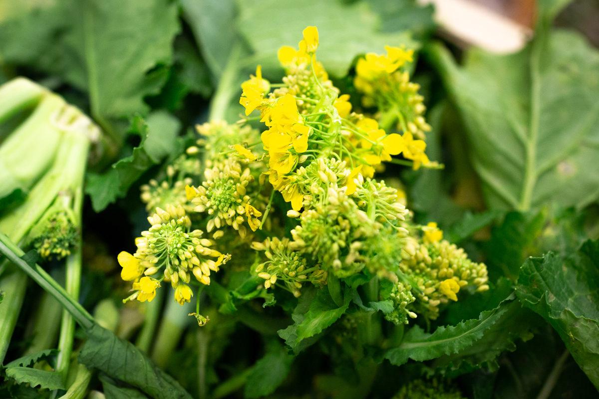 Fruit And Veg Market Report April 2019 Cime Flower