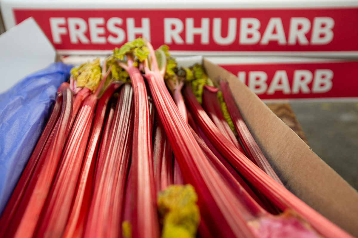 Fruit And Veg Market Report February 2019 Forced Rhubarb