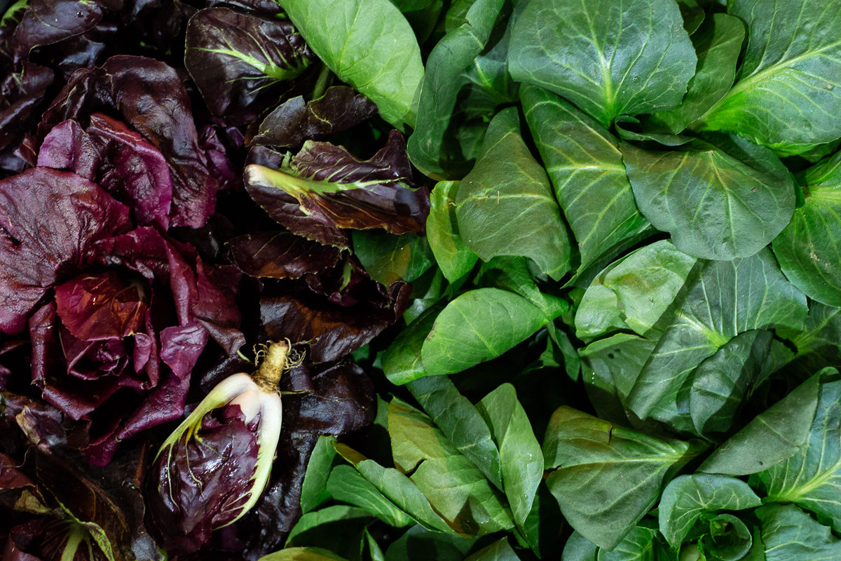 Fruit And Veg Market Report January 2019 Chicories