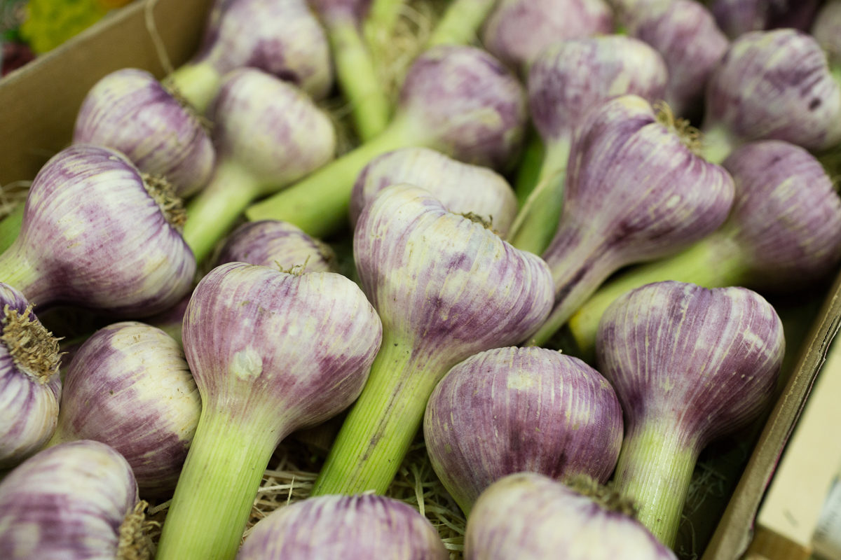 Fruit And Veg Market Report June 2018 Purple Garlic
