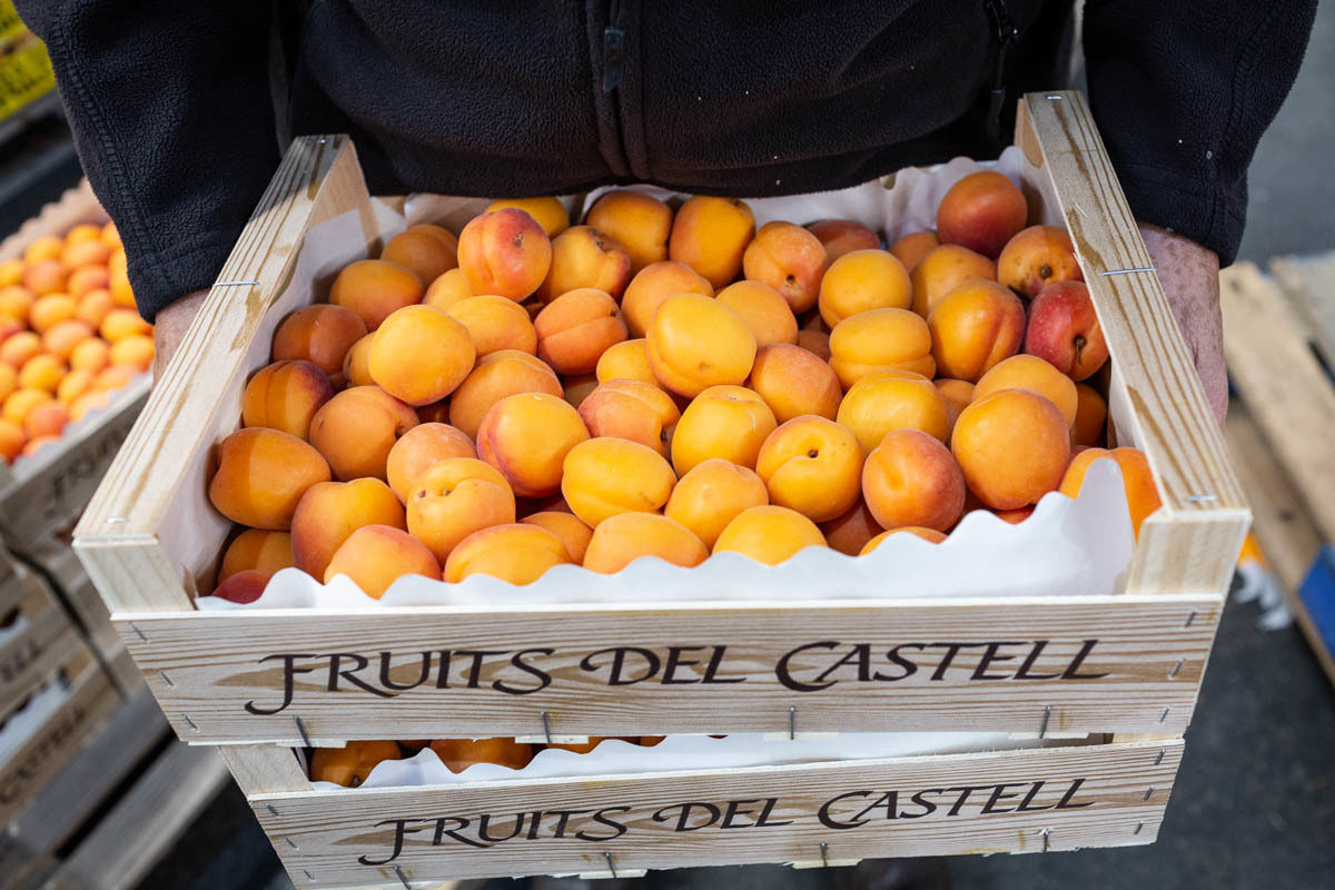 Fruit And Veg Market Report June 2019 Apricots