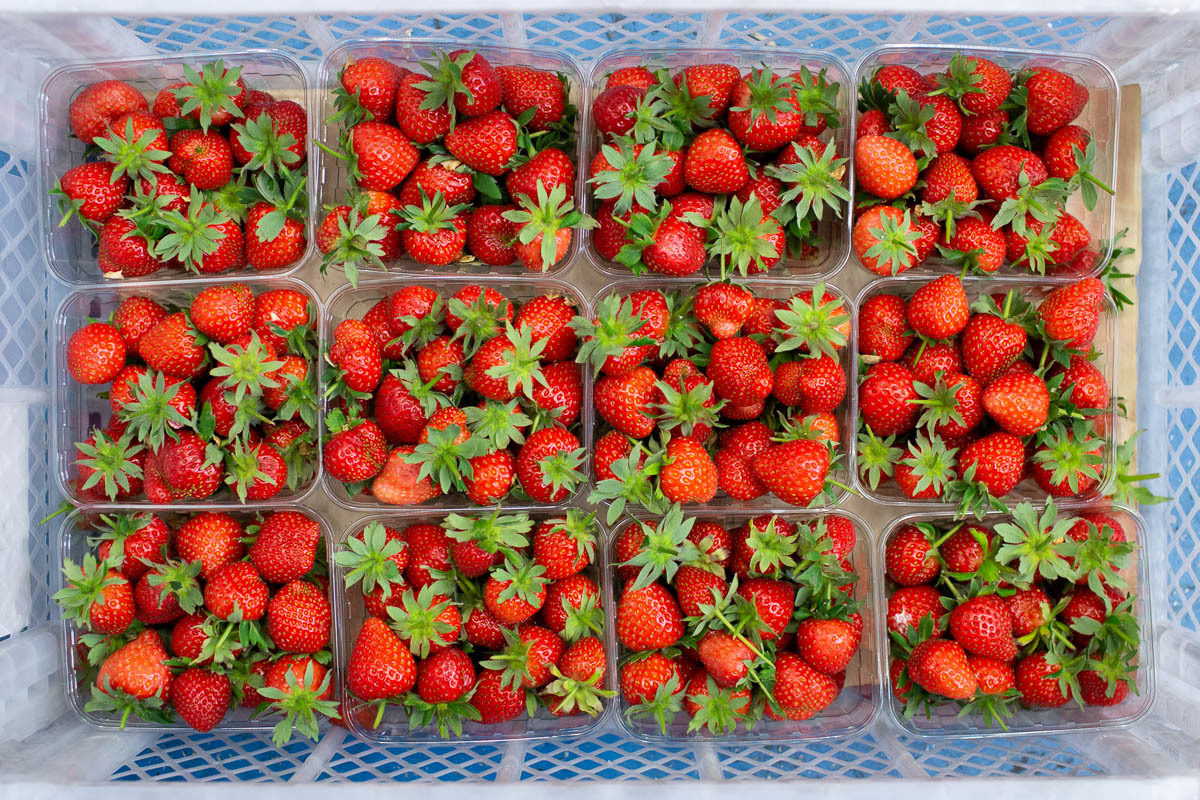 Fruit And Veg Market Report June 2019 Strawberries