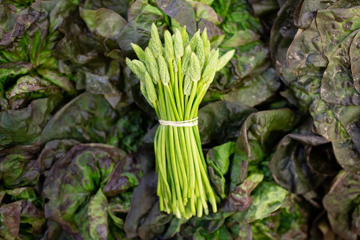 Fruit And Veg Market Report June 2019 Wild Asparagus