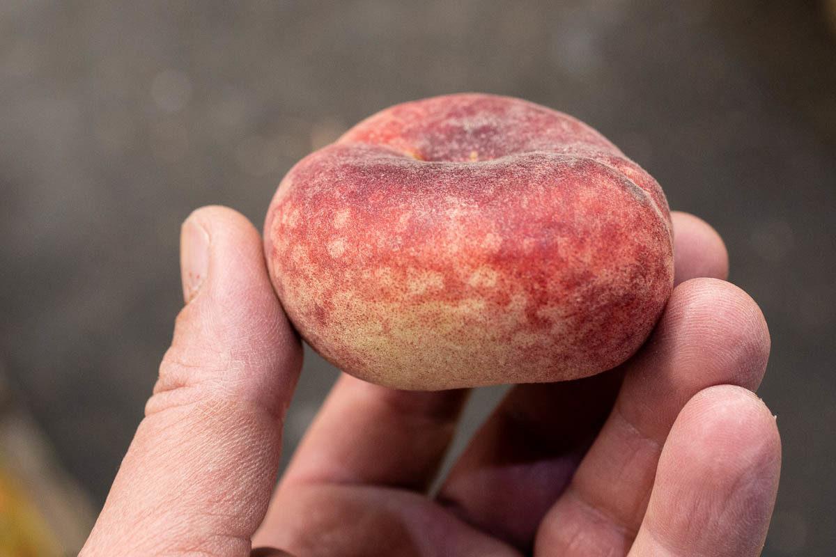 Fruit And Veg Market Report June Flat Peach