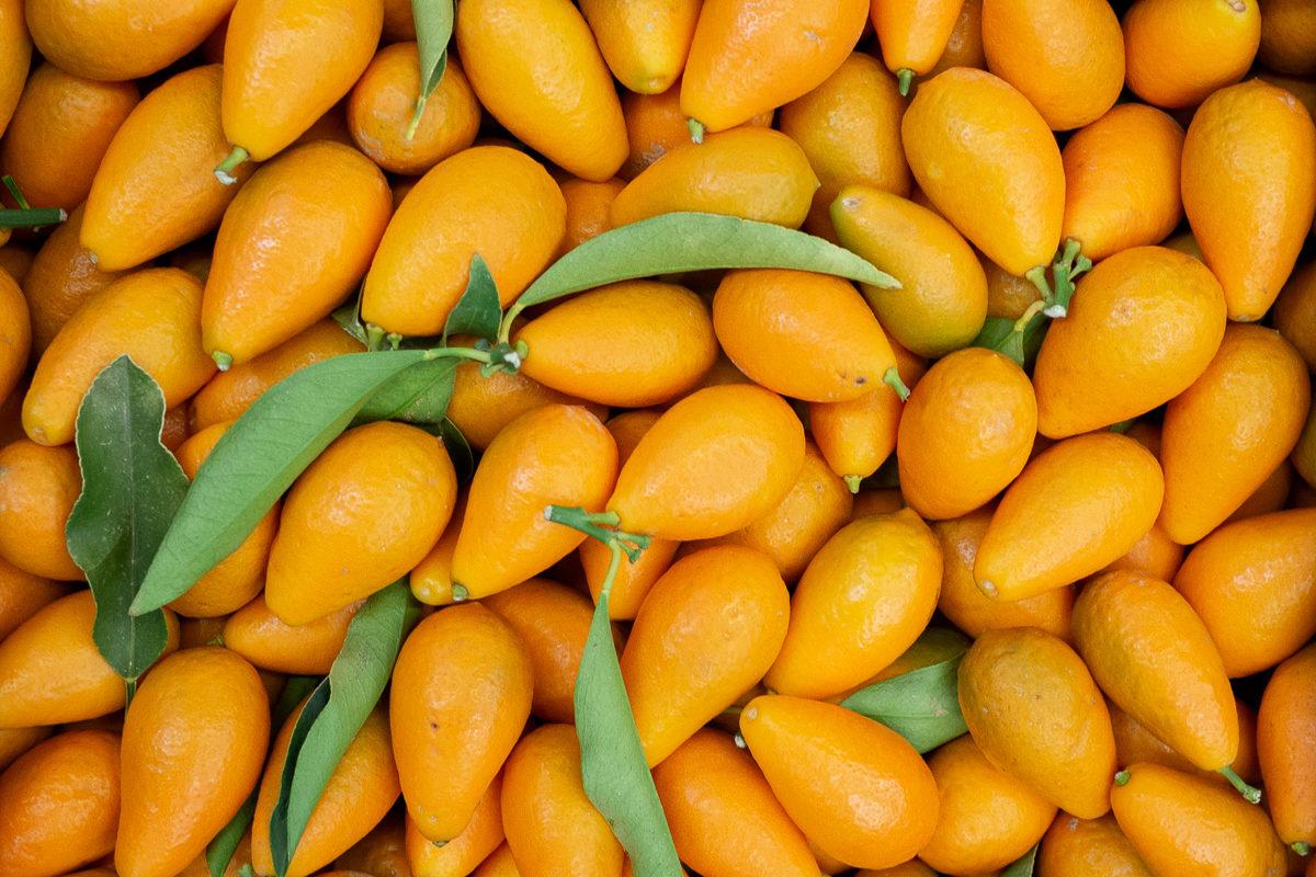 Fruit And Veg Market Report March 2019 Kumquats