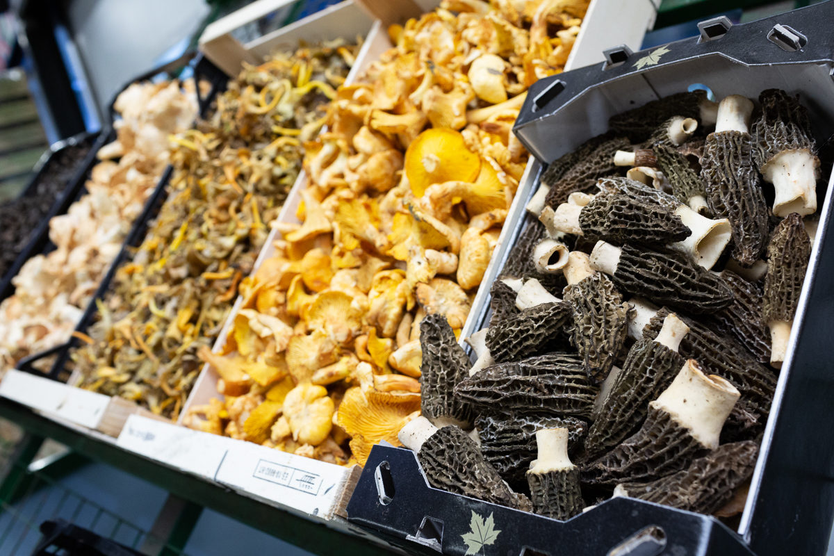 Fruit And Veg Market Report March 2019 Wild Mushrooms