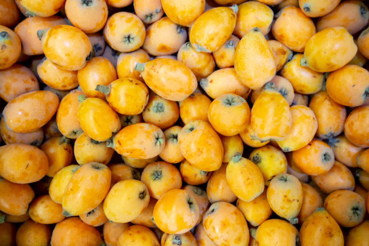 Fruit And Veg Market Report May 2019 Loquats Gilgrove