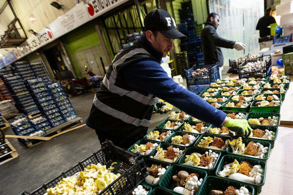 Fruit And Veg Market Report May 2019 Mushroom Man