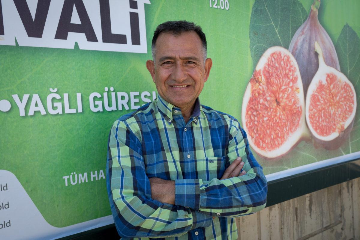 Fruit And Veg Product Profile September 2017 Bursa Black Fig Salih Calih