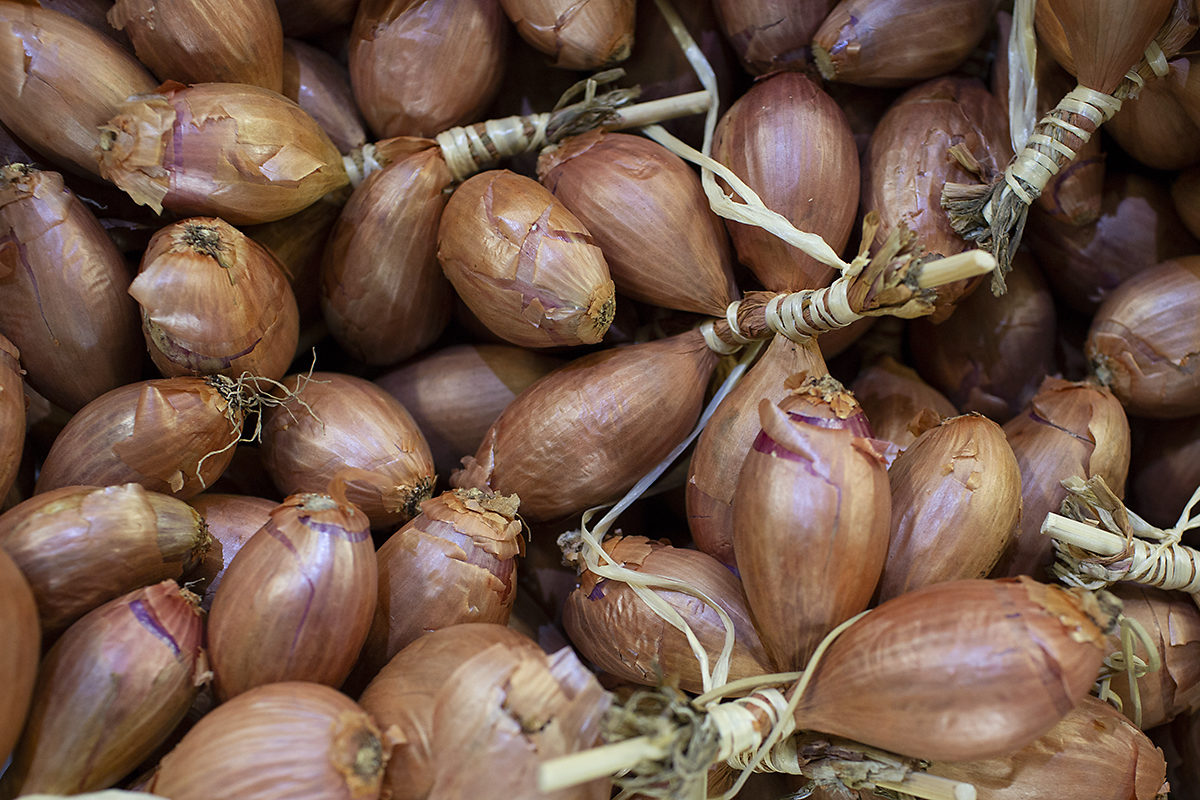 Fruit And Vegetable Market Chefs Guide Root To Flower Onions