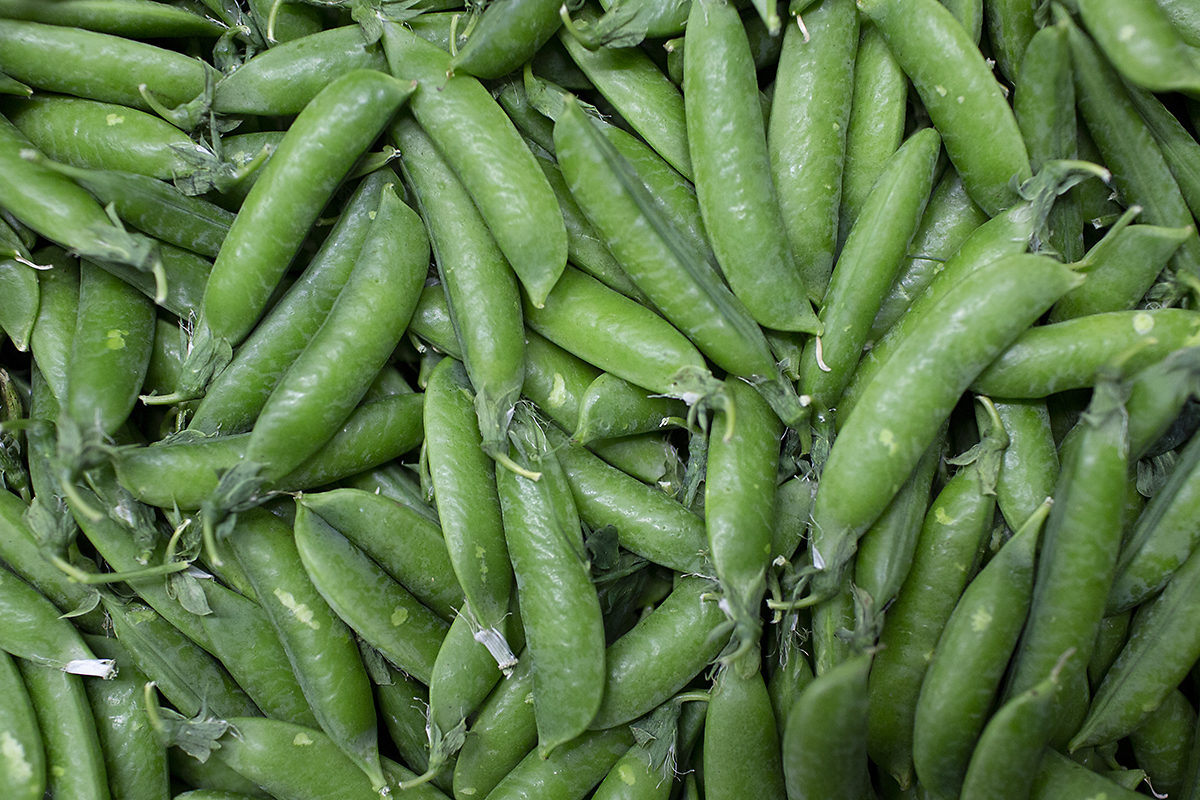 Fruit And Vegetable Market Chefs Guide Root To Flower Peas